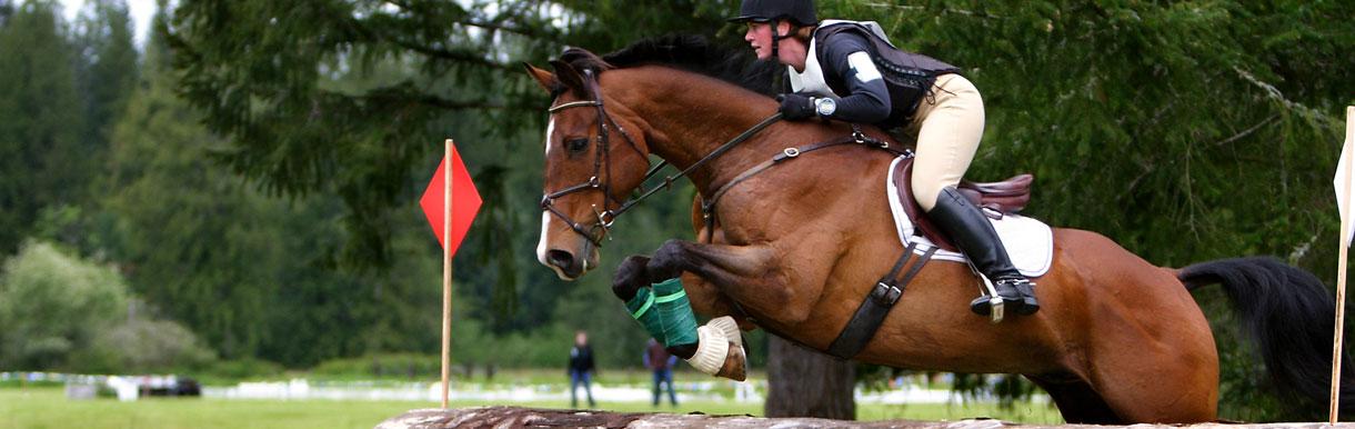 Horse Health Programme