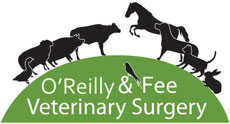 O'Reilly & Fee Veterinary Surgery